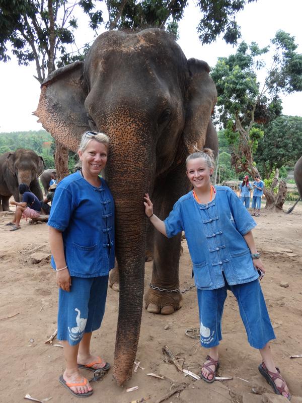 Elephant training camp in Thailand