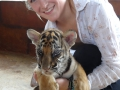 Jenna with baby tiger at Tiger Temple